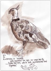 edm125_birdsml-copy
